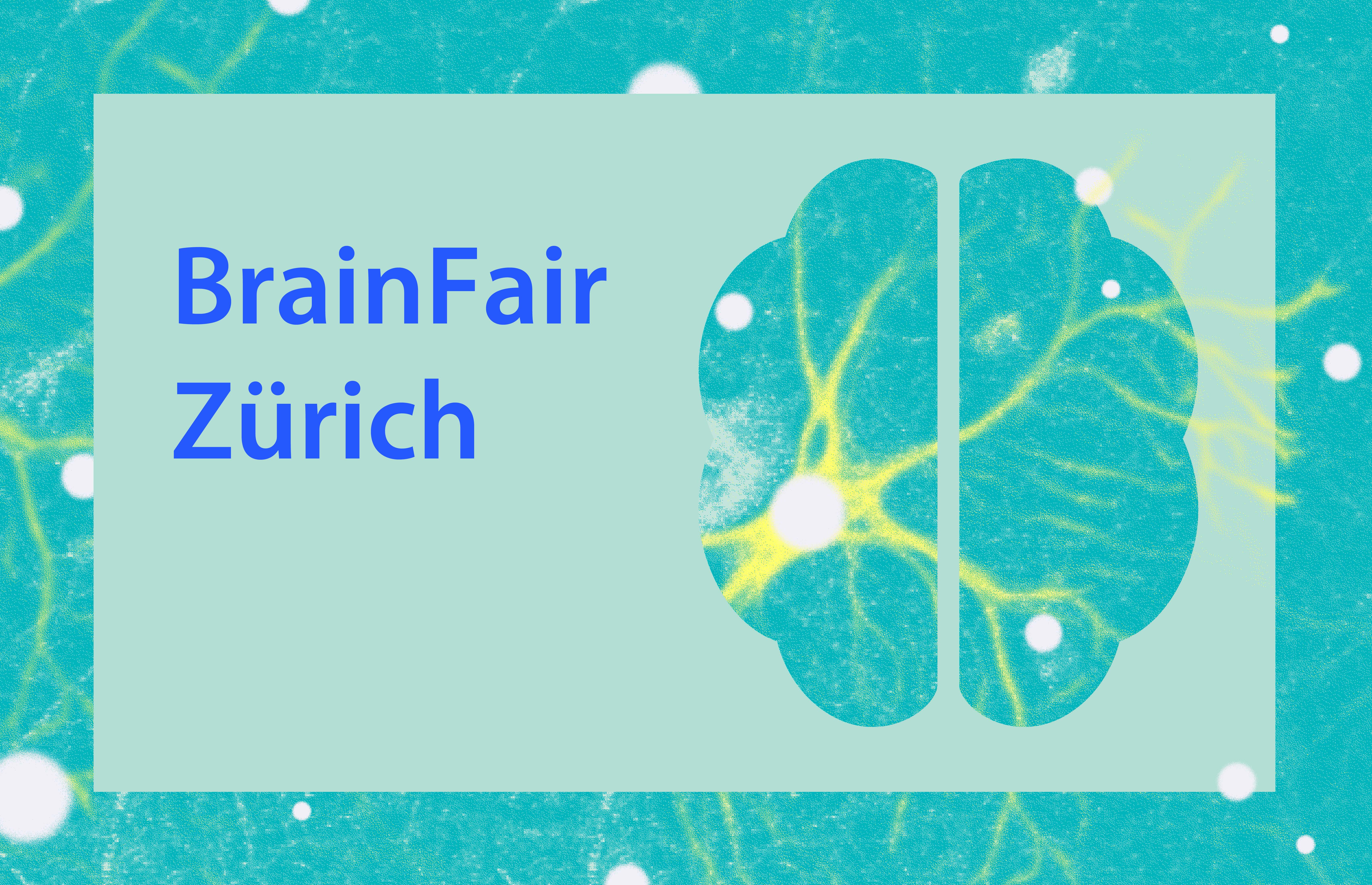 Phd program neuroscience zurich
